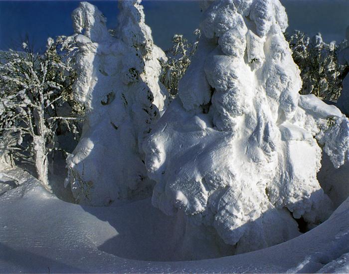 冬<br>秋すでに去り、褐色の野に冬の陽射し、やがて無彩色の、白い冬へ。輝く山、寒風すさぶ荒野、そこにはまた風雪のドラマが。<br>蔵王中腹(山形県) 2月上旬晴