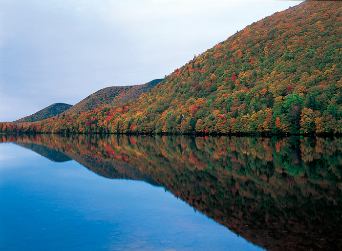 暮らしのすぐそばにある大自然。吸いこまれそうな静けさがあった