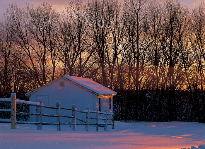 寒気団が近づいているらしい。明日はすべてが雪に埋もれてしまうだろう