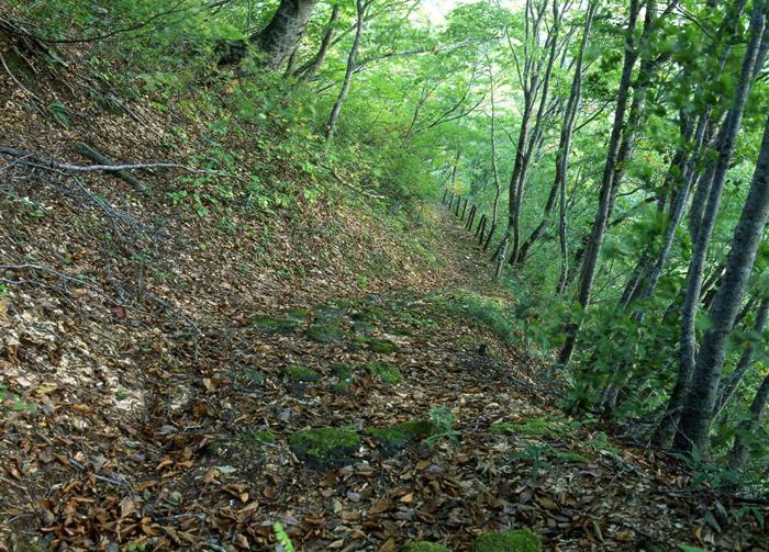 山刀伐峠<br>(山形県尾花沢町?最上町)<br>(510メートル)<br>松尾芭蕉の「奥の細道」のなかでも最大の難所とされている峠である。