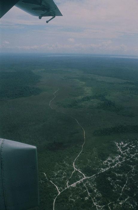 カリマンタン空撮<br>(飛行機からの風景)