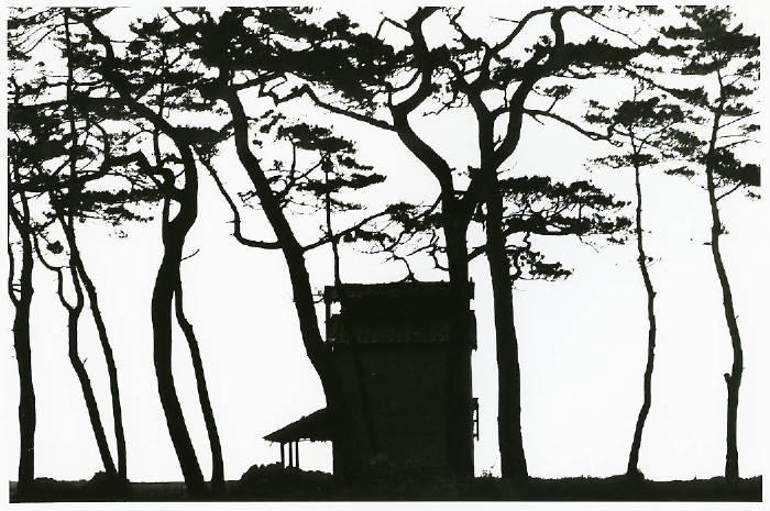 「旧東海道」より