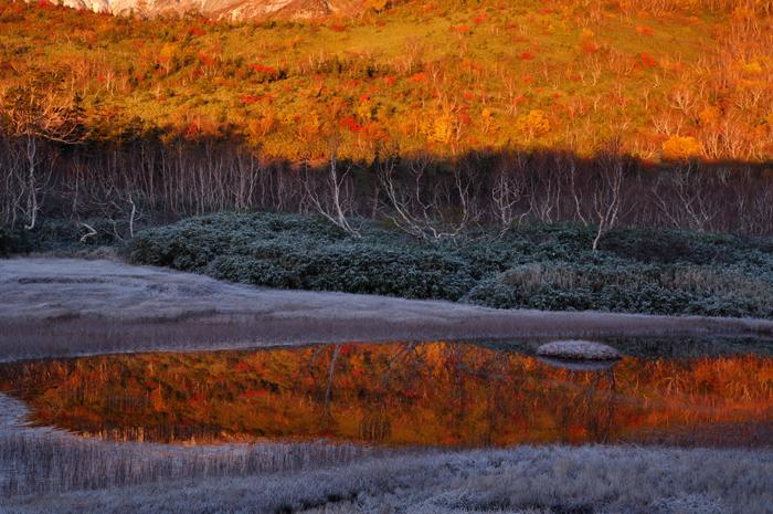 栂池寸景 浮島湿原