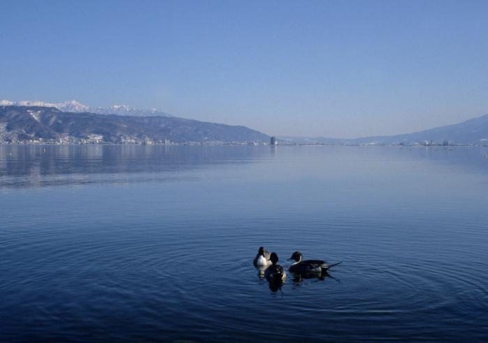 早春の諏訪湖