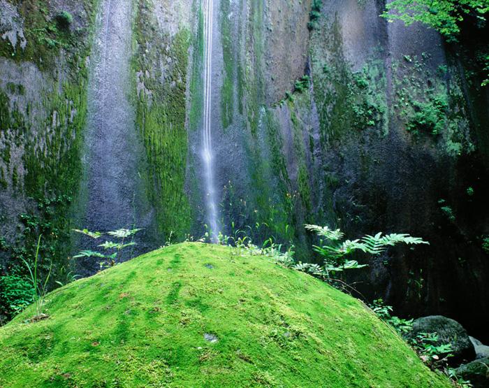 大分県・由布川峡谷の作品。凝灰岩を舐めるように流れる幾筋もの滝が印象的です。周囲の苔が、この峡谷の湿潤している風合いを、静かに語っていました。