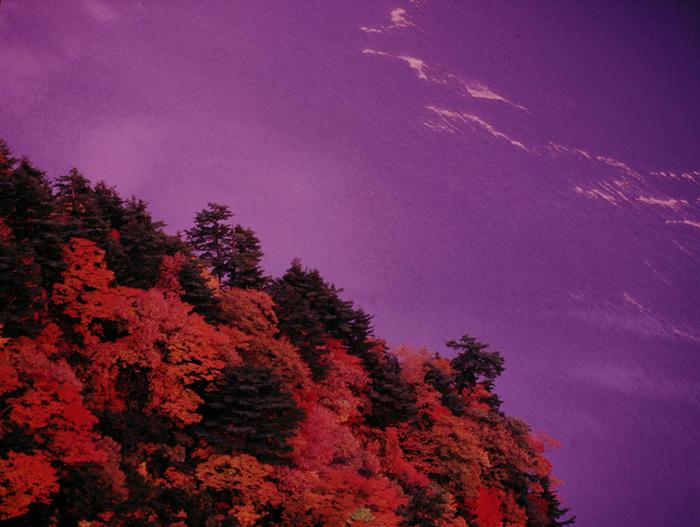 福島県・田子倉湖の夕景です。雲が焼けた直後、水面が紫色に染まり、こんな色に出会えるのかと思うくらい不思議でした。