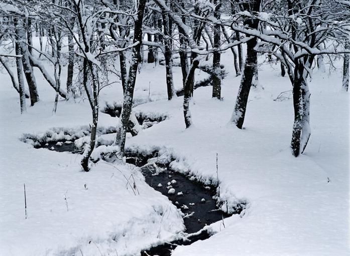 「雪裡」  長野市 戸隠