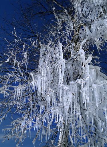 「凍氷」 蓼科町 蓼科湖