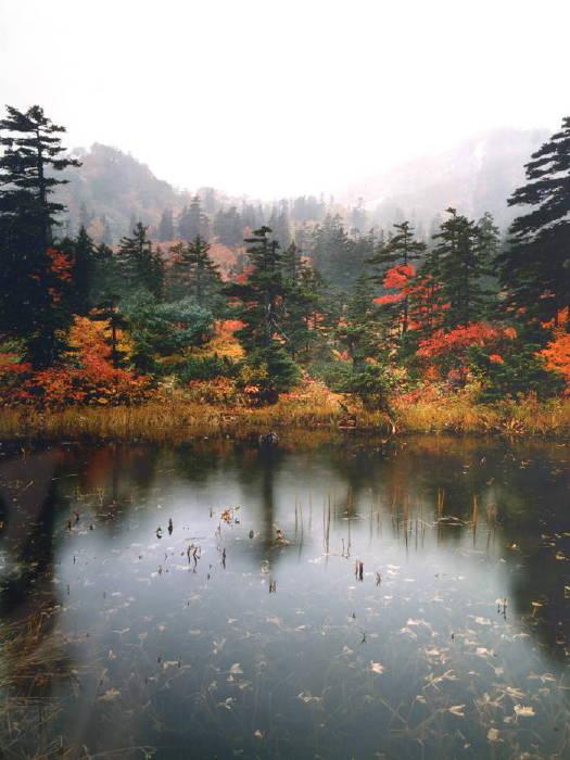 大雪山系の沼