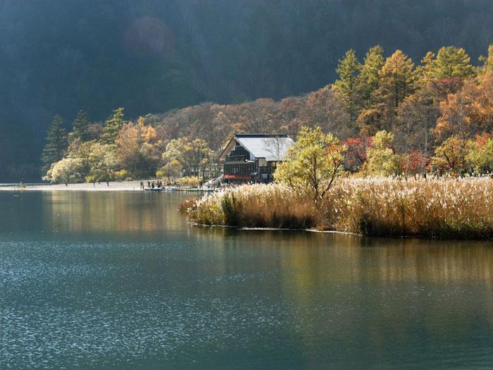鮮やかな湖畔 (奥日光、湯ノ湖)