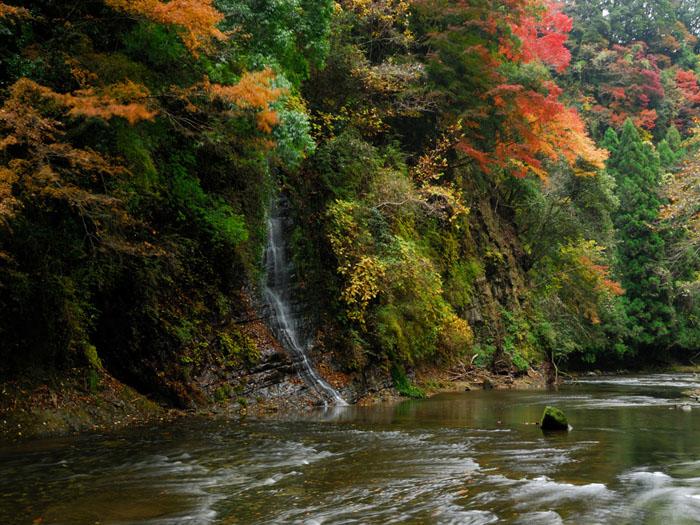 紅葉と清流 (千葉県、養老渓谷)