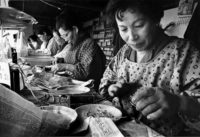 農家の主婦内職 農村電子工業2 長野県伊那市富県 1964年