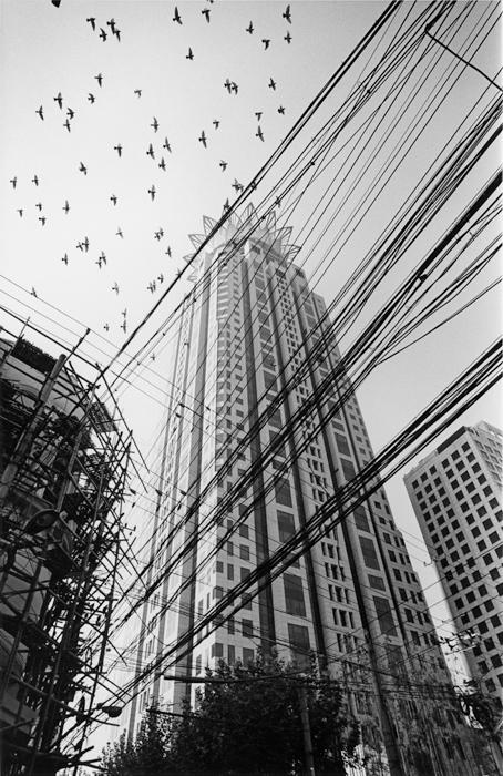 朝の飛翔 黄浦区広東路 2005年9月