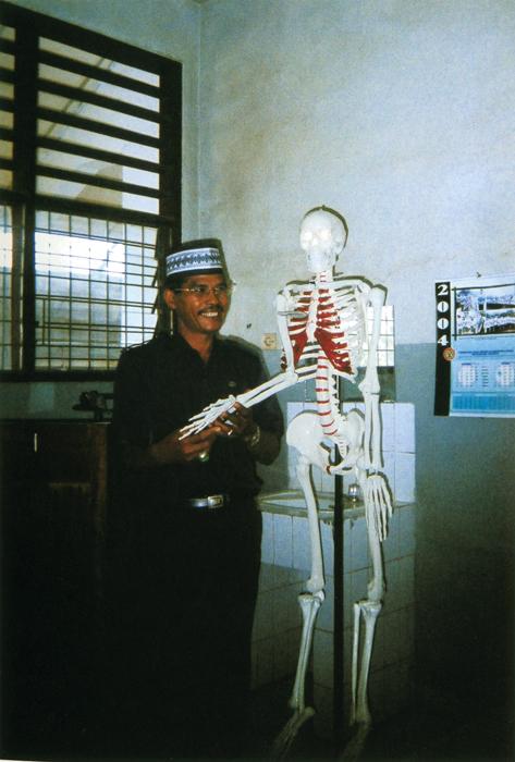 撮影者 ヌルディアンサーくん(11歳)この人体模型は、ぼくのお父さんが学校に寄付したんだ。大きくなったら学者になりたいな。