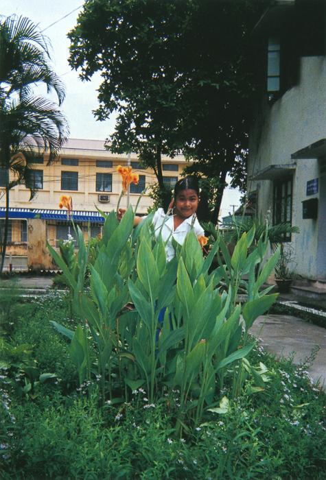 撮影者 グォ・ティ・ニュンさん(10歳)中庭にはたくさんの花が咲いていて、顔を近づけると虫の声が聞こえるの。